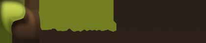 Pixxelpassion Logo - Webdesign für Leipzig